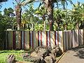 Madeira em Abril de 2011 IMG 1769 (5663781922).jpg