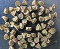 Malva neglecta seeds, Klein kaasjeskruid zaden.jpg