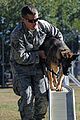 Man's best friend, airman's best wingman 131114-F-OB680-053.jpg