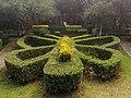 Mariposa de arbustos.jpg