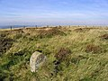 Marker stone on the way to High Seat - geograph.org.uk - 577240.jpg