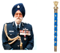 Marshal of Indian Air Force Arjan Singh.png