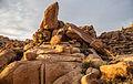Mastodon Peak Cottonwood Spring (16895385000).jpg