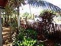 Mata verde - panoramio (4).jpg