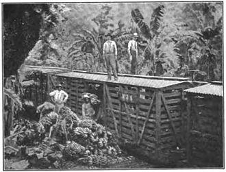 Liberal State - The Atlantic railroad construction.