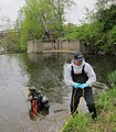 May 2012, Trying not to disturb contaminated sediment (7367298662).jpg