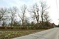 Meidoorn als weerhaag te Zwalm - 372596 - onroerenderfgoed.jpg