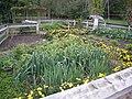 Meijer Gardens October 2014 30 (Michigan's Farm Garden).jpg