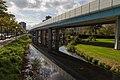 Metrobaan Duikerlaan - panoramio.jpg
