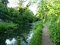 Mid Devon , Grand Western Canal - geograph.org.uk - 1332069.jpg
