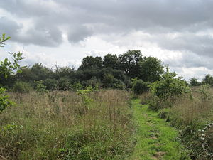 Moat Mount Open Space - Image: Moat Mount near Barnet Road