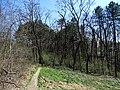 Modřany, Píšovický les, pěšina.jpg