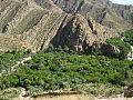 Montagne de la commune de Menâa (Wilaya de Batna).jpg