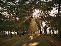 Morning Park of Mymensingh.jpg