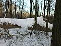 Morysin - zespół pałacowo-parkowy - pod śniegiem.jpg