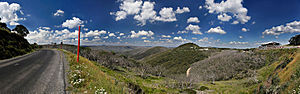 Summer scenery from Mt Hotham, Victoria, Australia