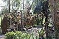Muñecas colgadas de árboles.JPG