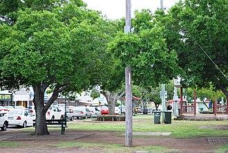 Murgon - The park on the main street of Murgon