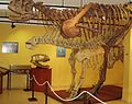 Museoestepona1.jpg