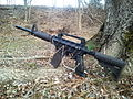 My painted Tippmann US Army Alpha Black.jpg