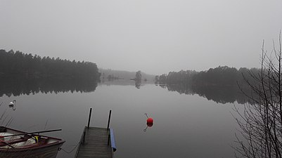 Mysterious lake view.jpg