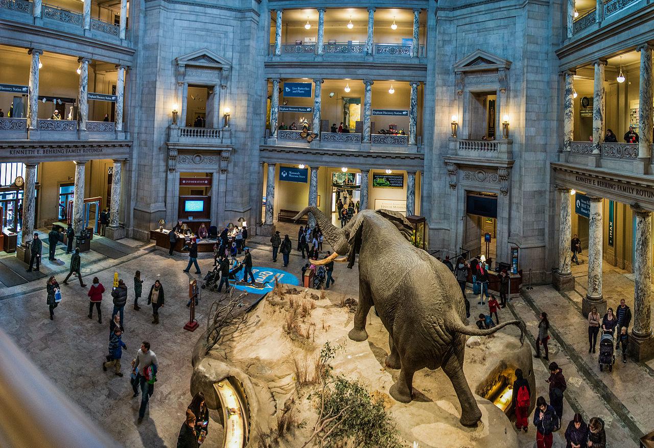 Best museum in dc