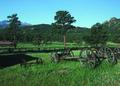 NRCSCO01017 - Colorado (1425)(NRCS Photo Gallery).tif