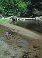 NRCSOR00046 - Oregon (5787)(NRCS Photo Gallery).jpg