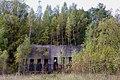 NSG Steinbruch Holzmühle (15).jpg