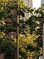 NYC Street Tech 10.jpg