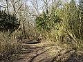 Nationaal Park Kennemerland (39561144450).jpg