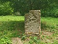 Nationalpark Hainich craulaer Kreuz 2020-06-03 15.jpg
