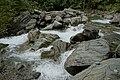 Natur in der Rabischschlucht 20190819 023.jpg