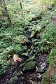 Naturpark Schwarzwald MitteNord Hirsau Schweinbachtal Schweinbach Foto Lividus.jpg