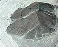 Nazca lines - panoramio (2).jpg