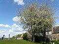 Near Durham Cathedral - England P1200689 (13336183674).jpg