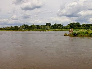 Lusatian Neisse - The Neisse river near village Ratzdorf (D) at the confluence in the Oder river. View to Poland. Up front the Neiße river