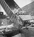 Nesher quarry, 1956 (id.27595741).jpg