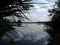 Netherlands Peel lake.jpg