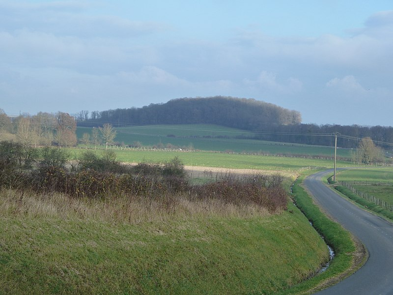 Nettancourt (55) - La colline d'Huppemont (altitude 181 m) sur laquelle se trouvait autrefois un camp militaire romain. Vue depuis l'entrée du vilage de Vroil. Huppémont était, au moyen âge, un village formant commune et paroisse.