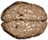 Neuro logo.png