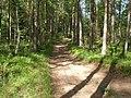 Nevelsky District, Pskov Oblast, Russia - panoramio (25).jpg