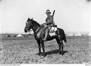 New Zealand Mounted Rifles Brigade - New Zealand Trooper, horse and equipment