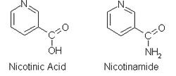 Vitamina B3 - Wikipèdia