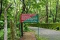 Nilambur teak forest 03677.JPG