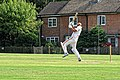 Nuthurst CC v. The Royal Challengers CC at Mannings Heath, West Sussex, England 30.jpg