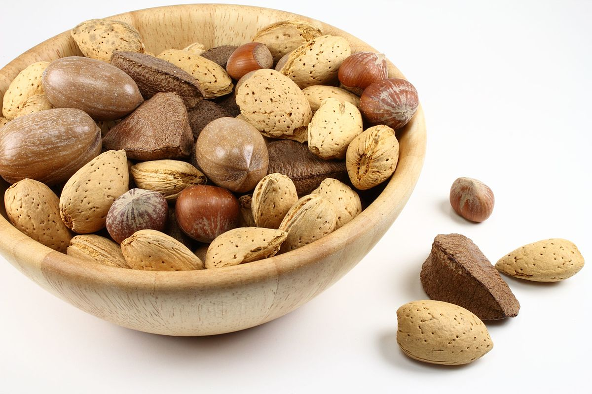 nut — Wiktionnaire