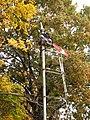 Oaklawn Gardens Semaphore - panoramio.jpg