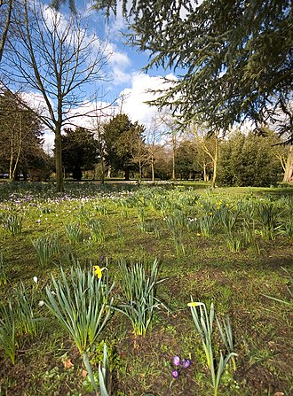 Oaks Park (London) - Oaks Park, Carshalton