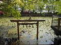 Oboro ga Pond at Funae, Ise.jpg